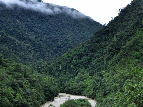 Rio Bombuscaro