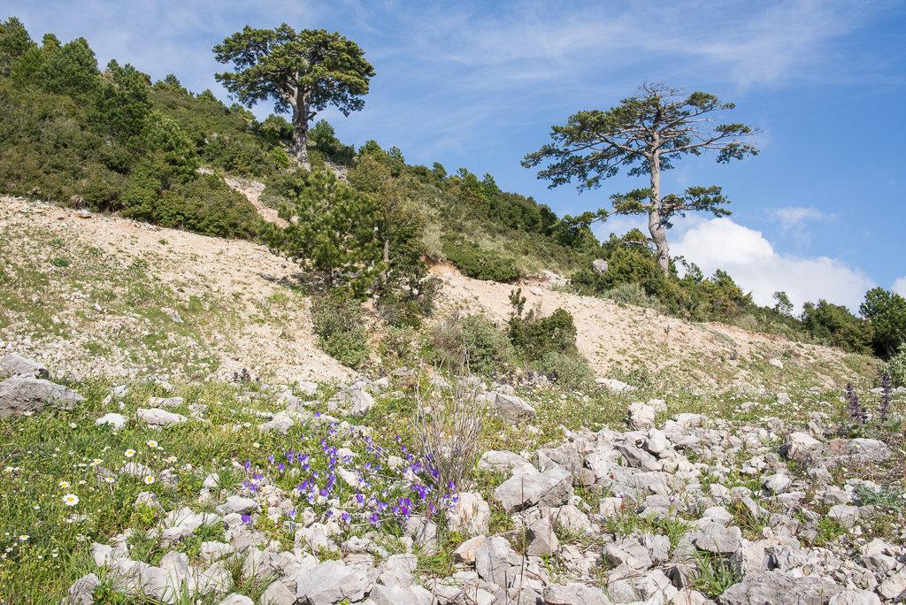 Albánie – národní park Llogara – VIDEO (www.infoglobe.cz) cd8533f461