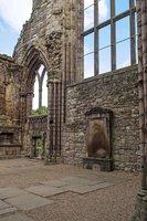 в руинах бывшего костела августинцев