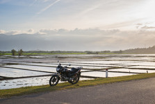 rýžové pole u Nha Trangu