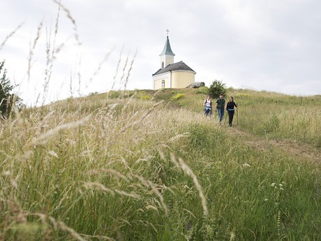 going slightly uphill during the Saint Jacob's pilgrimage event, (c) Wurnig - Weinviertel Tourismus GmbH