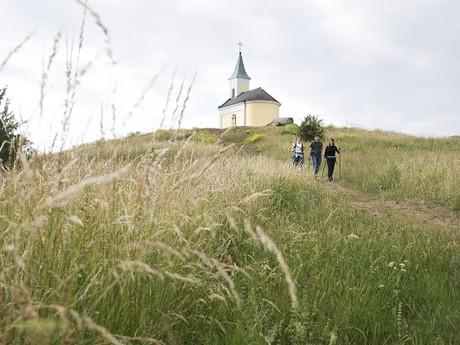 пологие холмы во время Пути Святого Иакова, (c) Wurnig - Weinviertel Tourismus GmbH