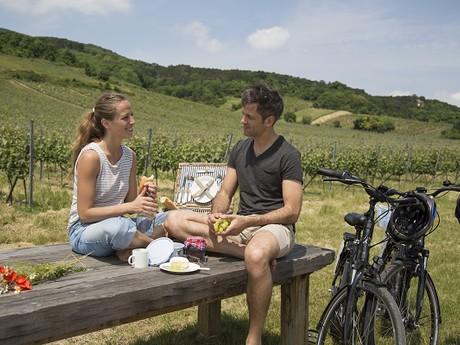 езда на велосипеде и впечатления в Венском лесу, (c) Raimo Rudi Rumpler - Wienerwald Tourismus GmbH