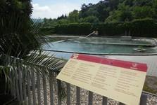 maturing pools