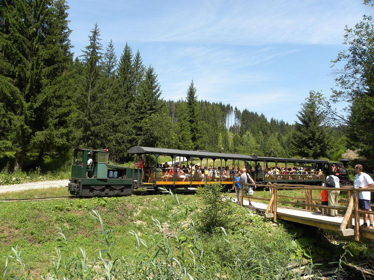 Историческая лесная железная дорога