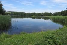 Podtrosecké rybníky