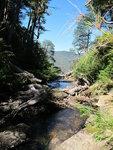 прозрачные ручьи в национальном парке