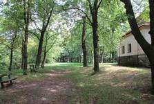 les Koráb s kostelem sv. Prokopa