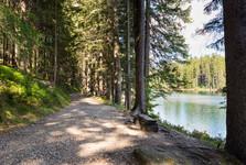 cesta kolem Černého jezera