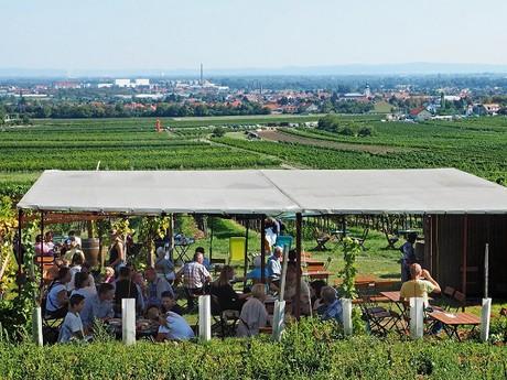 (c) Wienerwald Tourismus GmbH/Paul Landl