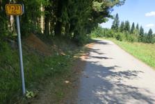 cyklostezka vede stínem šumavských lesů