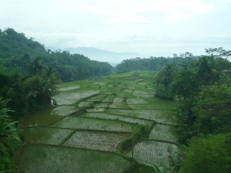 Indonésie V.: Expedice 2011 – přesun vlakem do města Yogyakarta (www.infogl